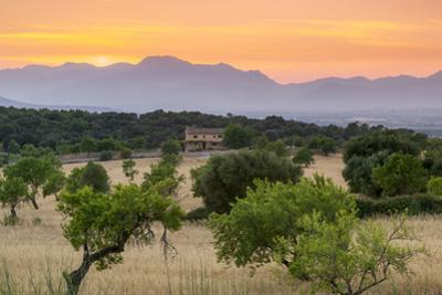 View of landscape with olive trees and mountains at dusk with farmhouse in landscape, Majorca, Bale by John Miller