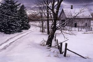 Through the Woods by John Morrow