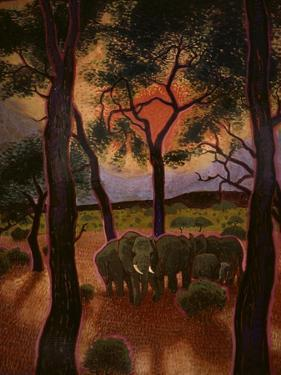 African Twilight by John Newcomb