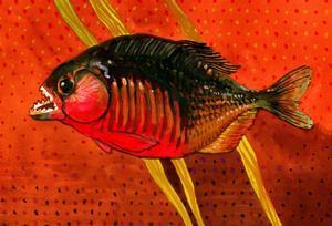 Amazon Piranha by John Newcomb