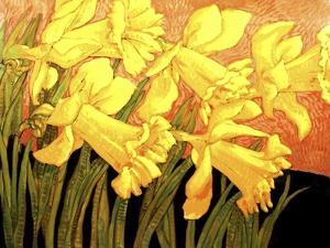 Big Daffodils by John Newcomb