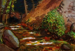 Brook at Kit Carson State Forest by John Newcomb