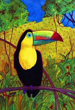 Toucan by John Newcomb
