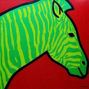 Irish Zebra by John Nolan