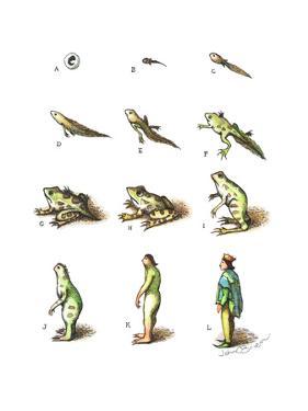 Evolution of a tadpole to a prince. - Cartoon by John O'brien