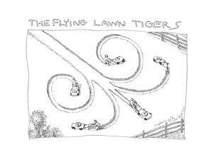The Flying Lawn Tigers - Cartoon by John O'brien
