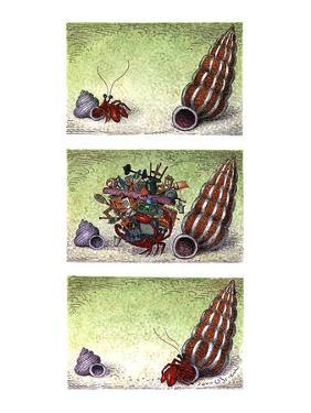 Two column color cartoon showing crab in a small shell walking towards a b? - New Yorker Cartoon by John O'brien