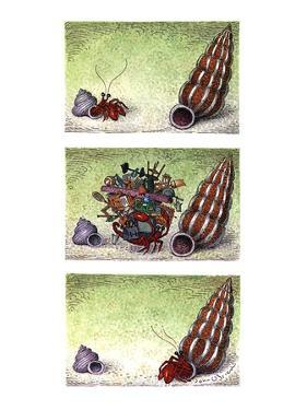 Two column color cartoon showing crab in a small shell walking towards a b… - New Yorker Cartoon by John O'brien