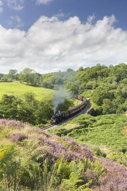 A Steam Locomotive Pulling Carriages Through Darnholme on North Yorkshire Steam Heritage Railway by John Potter