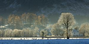 Hoar frost over Stonethwaite village in Borrowdale, Lake District National Park, Cumbria, England,  by John Potter