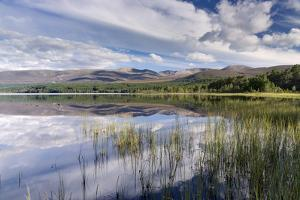 Loch Morlich, Glenmore, Badenoch and Strathspey, Scotland, United Kingdom, Europe by John Potter