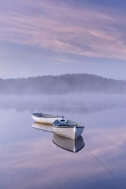 Misty daybreak over Loch Rusky in May, Aberfoyle, The Trossachs, Scotland, United Kingdom, Europe by John Potter
