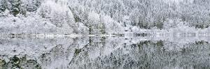 Reflections on Loch Chon in winter, Aberfoyle, Stirling, The Trossachs, Scotland, United Kingdom by John Potter