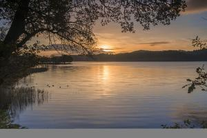 Sunrise over Kinlochard, Loch Ard, Aberfoyle, The Trossachs, Scotland, United Kingdom, Europe by John Potter