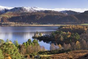 Woodland around Brandlehow, Derwent Water, Cumbria, England, United Kingdom, Europe by John Potter