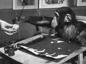 Artistic Primate by John Pratt