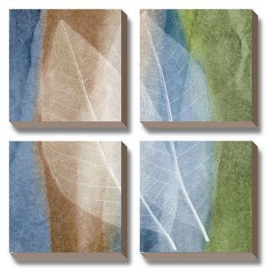 Leaf Stricture I by John Rehner