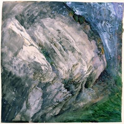 Rocks and Vegetation at Chamouni, 1854
