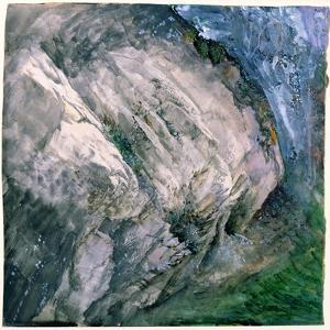 Rocks and Vegetation at Chamouni, 1854 by John Ruskin