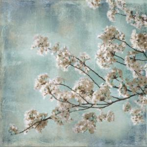 Aqua Blossoms I by John Seba