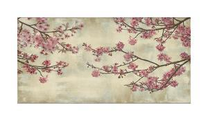 Cherry Blossoms by John Seba