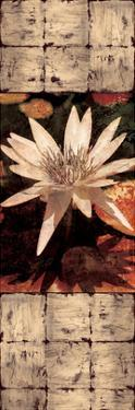 Waterlily Panel I by John Seba