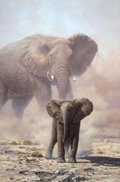 Amboseli Child African Elephant by John Seerey-Lester