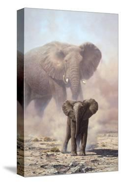 Amboseli Child African Elephant by John Seerey-Lester