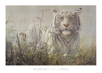 Monsoon- White Tiger (detail)
