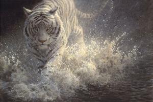 White Lightning by John Seerey-Lester