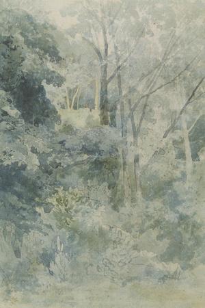 In Rokeby Park, C.1805