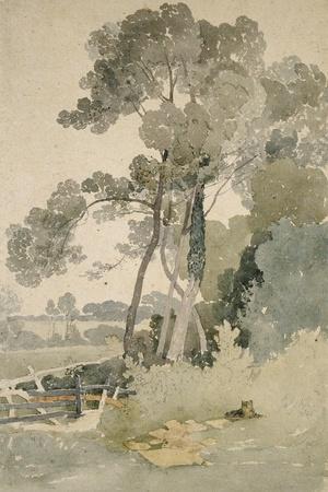 Near Brandsby, Yorkshire, 1865