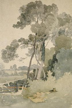 Near Brandsby, Yorkshire, 1865 by John Sell Cotman