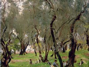 The Olive Grove, C.1910 by John Singer Sargent