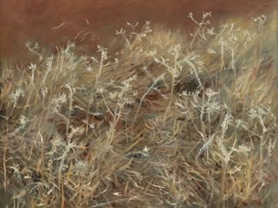 Thistles, 1885-89 by John Singer Sargent