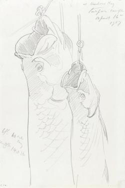 Two Tarpon, 1917 by John Singer Sargent