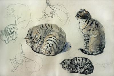 Studies of a cat, 1971 by John Stanton Ward