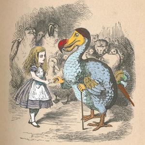 'Alice and the Dodo', 1889 by John Tenniel
