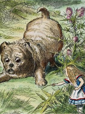 Carroll: Alice, 1865 by John Tenniel