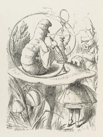 Caterpillar Alice and the Caterpillar by John Tenniel