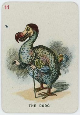 The Dodo by John Tenniel