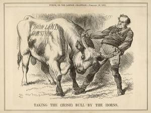 William Gladstone Taking the (Irish) Bull by the Horns by John Tenniel