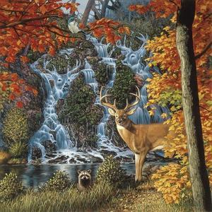 Afternoon at Sanctuary Falls by John Van Straalen