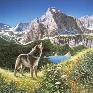 Alpine Chorus by John Van Straalen