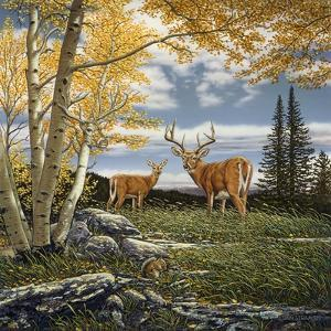 Woodland Meadows by John Van Straalen