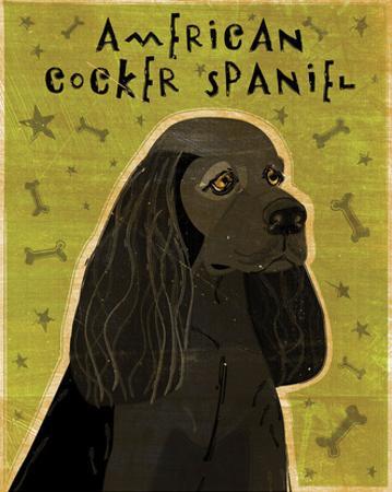 American Cocker Spaniel (black) by John W. Golden