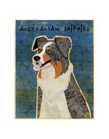Australian Shepherd (Blue Merle) by John W. Golden