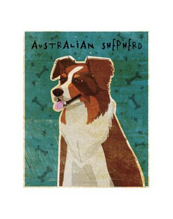 Australian Shepherd (Red) by John W. Golden