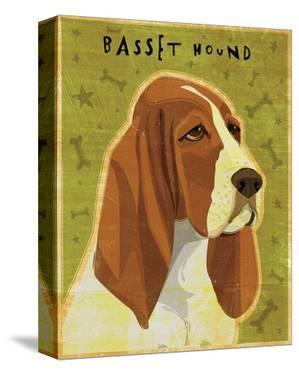 Basset Hound by John W. Golden