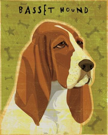 Basset Hound by John W. Golden